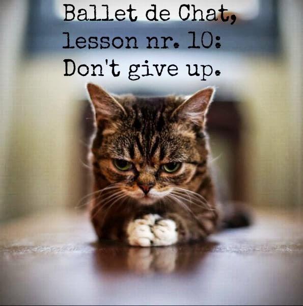 ballet de chat